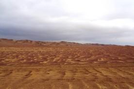 Desierto Paracas